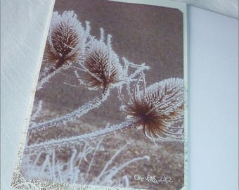 "Handmade from photos ""Frost Thistles"" double card 10 5x15cm"