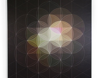 Flower of Life (wireframe)