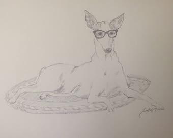 Hipster Ibizan Hound Original Pen Drawing