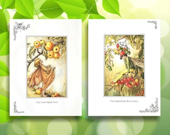 Nightshade Berry & Crab-Apple Flower Fairy Print from vintage book. Woodland Fairies Nursery themed gift for girl. Illustration for framing
