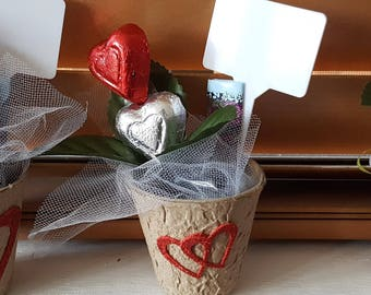 Original Valentines Day  gift, Chocolates & Flowers, Ready to ship!, Cute gift, hearts, unique, Small Valentine Flower, Seed Starter Pot