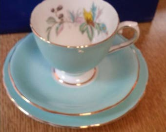 Aynsley eggshell blue trio