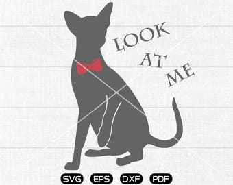 Cat SVG Files, Bow kitty Clipart, cricut, cameo, silhouette cut files commercial & personal use