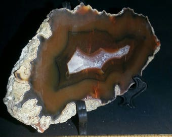 Condor agate for collection