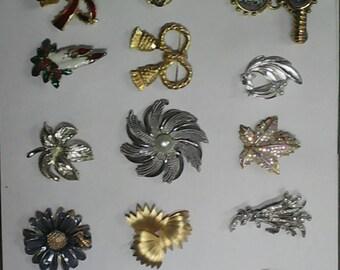 15 broochs
