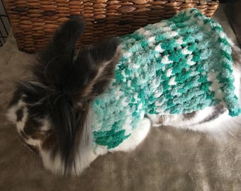 Hand knitted pet sweater