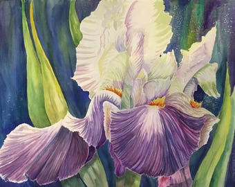 Grandma's Iris Original Watercolor
