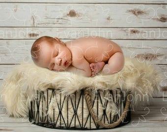 Basket with newborn digital background 2