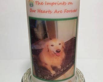 Unscented Pillar Candle, Pillar Candle, Memorial Candle,Pet Memorial, Gift, Dog Memorial, Cat Memorial, Tribute Candle
