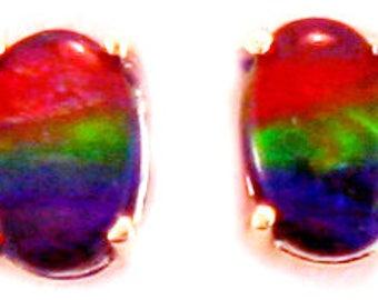 Canadian Ammolite  14k Rose  Gold Stud Earrings.