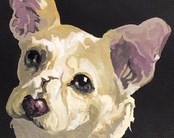 Realistic Full Color Pet Portrait