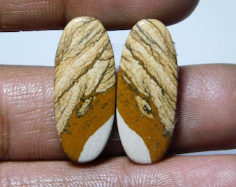 Amazing Pair ! Picture jasper Cabochons 100%Natural Picture jasper Matching Pair Gemstone Picture jasper Loose stone 18.15cts.(27x11x3)mm