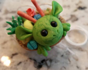 Walnut Dragon- Green