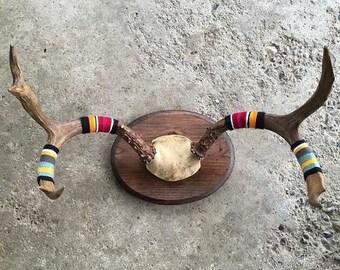 Mounted Antler Yarnbombed