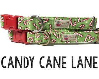 "Candy Cane Dog Collar - Christmas - Organic Cotton - Antique Brass Hardware - ""Candy Cane Lane"""