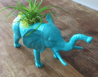 Blue elephant faux succulent planter