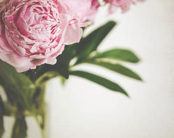 "Peony flower photography pale pink pastel girls room decor romantic floral wall art ""Peony Eleven"""