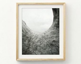 """Gray Wall Art - Abstract Photograph - Driftwood - Modern Rustic - Nature Wall Art - Minimal Wall Art -  Beach House Decor """"The Ocean Calls"""""""