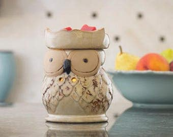 Owl Fragrance Warmer
