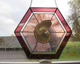 Stained Glass with Sliced Nautilus Shell Half in Mauve