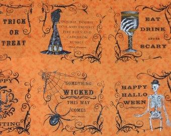 Eerily Elegant Halloween Raven Witch Hat Skull Moda Deb Strain Fabric Cotton Panel