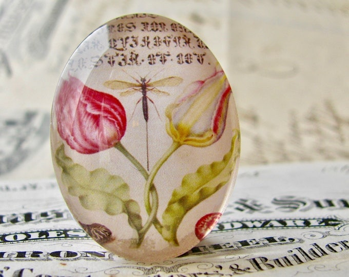 Dragonfly and tulips, glass oval cabochon, 40x30mm or 25x18mm, handmade in this shop, antique science drawing, Vintage Botanicals series