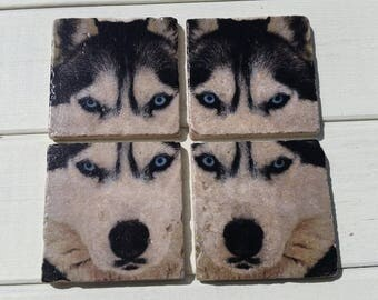 Siberian Husky Coaster Set of 4 Tea Coffee Beer Coasters