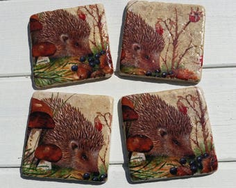 Hedgehog Set of 4 Tea Coffee Beer Coasters
