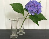 Chemistry Beakers set of 2 Apothecary Glass Vase Vintage Glasses