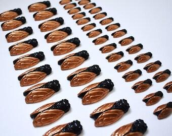 Lot 50 cigales cuivre et noir pour décoration