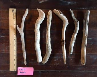 "Bundle of six (6) wonderful driftwood pieces, each about 11"" long"