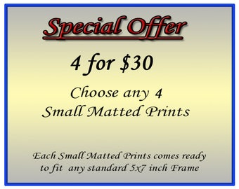 Art Sale, Choose any 4 Small Matted Prints, These Nature Photography Matted Prints come Ready for framing in 5x7 inch frames
