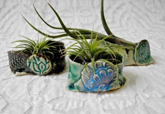 Air Plant Holder set, Air Plant planter, tiny planter, green bronze planter, organic shape, hobbit planter, tiny things, hobbit ware