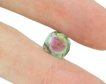 Watermelon Tourmaline Slice - 2.44 carats