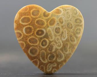 Heart Fossil Cabochon Petoskey Stone Fossilized Coral (CA8721)