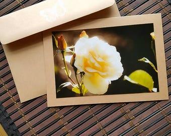 Blank greeting card Rose Gold