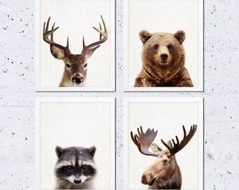Woodland Nursery Decor, Animals Print Set of Four, Bear Moose Raccoon Deer, Woodland Nursery Kids Baby Room Art Decor, Modern Printable Art