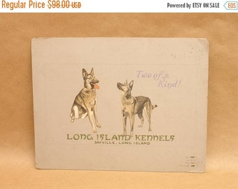 """ON SALE antique 1924 signed & dated original illustration advertising art for """"Long Island Dog Kennels"""", german shepherd #2"""