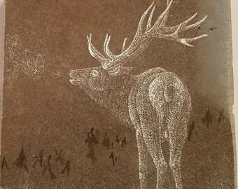Bugleing Elk