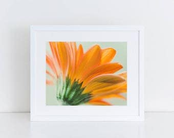 Orange Gerbera Daisy - Flowers - Fine Art Photography Print