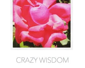 Crazy Wisdom Poster Art