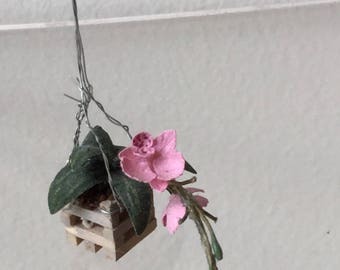"Dollhouse Miniature 1"" Scale Hanging Pink Orchid (ME)"