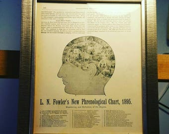 Original 1895 Vintage Phrenology Lithograph Print Book Plate from Ogilvie's Encyclopedia of Useful Information