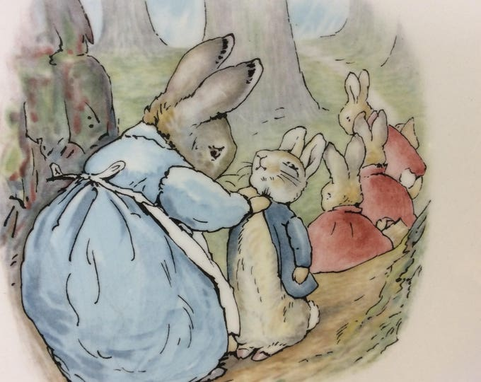 Beatrix Potter Designs Peter Rabbit plate from Wedgwood of Etruria & Barlaston vintage Peter Rabbit , vintage wedgwood china childs decor