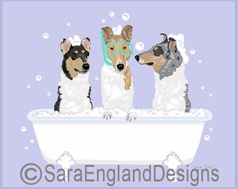 Spa Day - Collie-Smooth