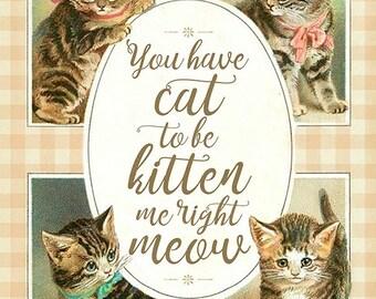 Cat To Be Kitten Me 8x10 Print