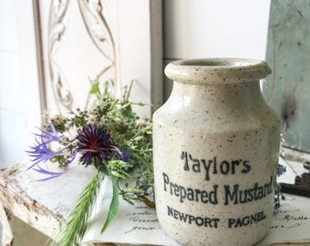 An antique stoneware advertising crock jar Taylor's Prepared Mustard of Newport Pagnel
