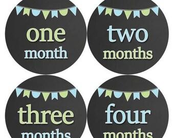 Baby Month Stickers, Baby Boy Gift, Milestone Stickers, Monthly Sticker, Monthly Baby Boy Stickers, Baby Bodysuit, Baby Shower Gift 335