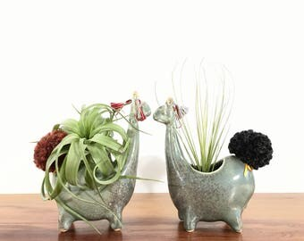 llama vase / alpaca vase/ air plant vase / speckled jade / one llama