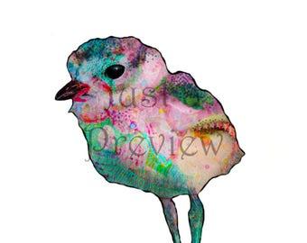 Photo print - Funky Colorful Bird 8x10